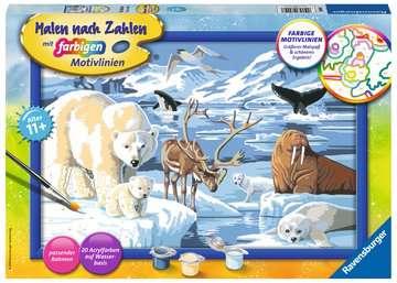 Dieren van de Arctis Hobby;Schilderen op nummer - image 1 - Ravensburger