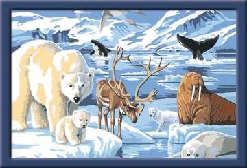 28909 Malen nach Zahlen Tiere der Arktis von Ravensburger 2