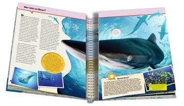 Ozeane Kinderbücher;Wieso? Weshalb? Warum? - Bild 5 - Ravensburger