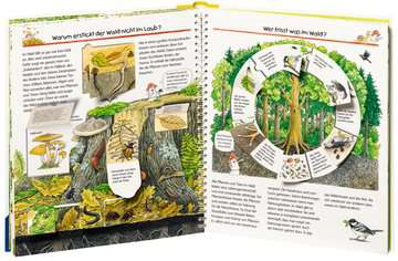 Wir entdecken den Wald Kinderbücher;Wieso? Weshalb? Warum? - Bild 4 - Ravensburger