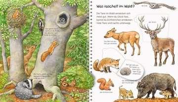 Mein junior-Lexikon: Tiere Kinderbücher;Wieso? Weshalb? Warum? - Bild 6 - Ravensburger