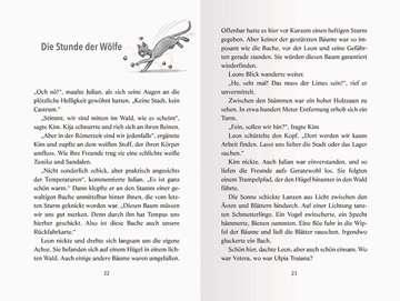 36722 Kinderliteratur Die Zeitdetektive, Band 42: Hinterhalt am Limes von Ravensburger 5