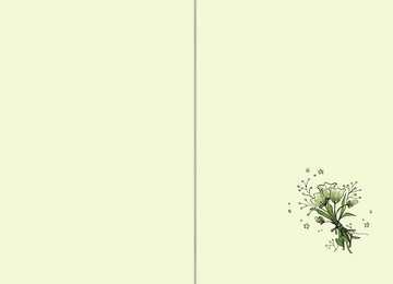 Der magische Blumenladen, Band 7: Das verhexte Turnier Kinderbücher;Kinderliteratur - Bild 4 - Ravensburger