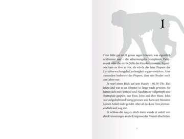 40820 Kinderliteratur Die Schule der Alyxa, Band 1: Der dunkle Meister von Ravensburger 4