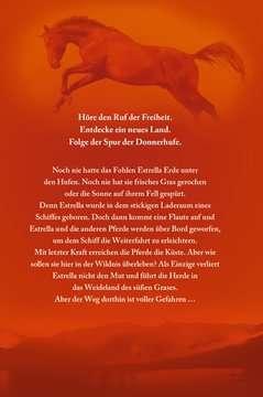 40823 Kinderliteratur Die Spur der Donnerhufe, Band 1-3: Flammenschlucht, Sternenfeuer, Nebelberge von Ravensburger 9