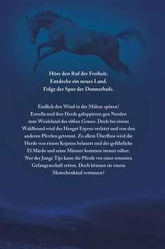 40823 Kinderliteratur Die Spur der Donnerhufe, Band 1-3: Flammenschlucht, Sternenfeuer, Nebelberge von Ravensburger 10