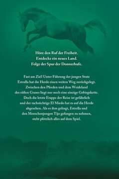 40823 Kinderliteratur Die Spur der Donnerhufe, Band 1-3: Flammenschlucht, Sternenfeuer, Nebelberge von Ravensburger 11