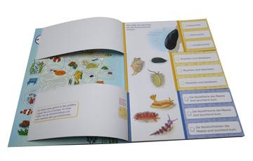 Haben Fische Haarausfall? Lernen und Fördern;Lernbücher - Bild 8 - Ravensburger