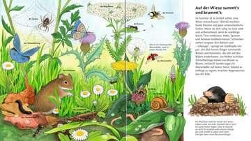 mein großes bilder-wörterbuch: tiere | babybücher und