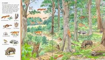 43647 Babybücher und Pappbilderbücher Mein großes Sachen suchen: Tiere der Welt von Ravensburger 4