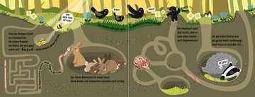 43789 Babybücher und Pappbilderbücher Wenn der Wald erwacht von Ravensburger 4