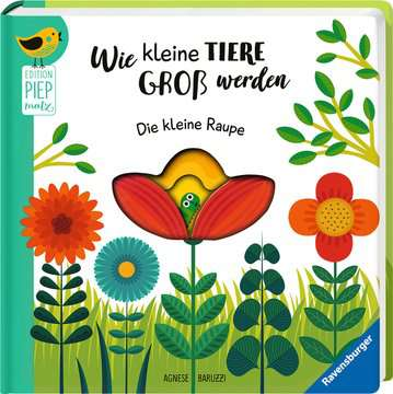 43827 Bücher Wie kleine Tiere groß werden: Die kleine Raupe von Ravensburger 2