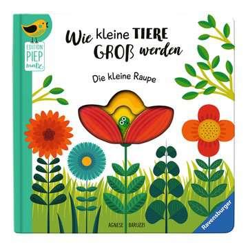43827 Bücher Wie kleine Tiere groß werden: Die kleine Raupe von Ravensburger 5