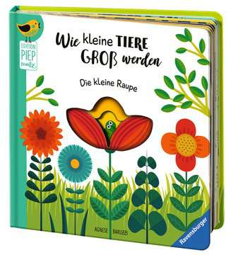 43827 Bücher Wie kleine Tiere groß werden: Die kleine Raupe von Ravensburger 6