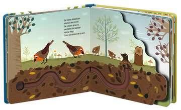 43828 Bücher Wie kleine Tiere groß werden: Die kleinen Rotkehlchen von Ravensburger 6