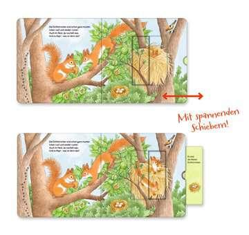 43846 Babybücher und Pappbilderbücher Wer hat sich hier versteckt? Suche die Waldtiere von Ravensburger 6
