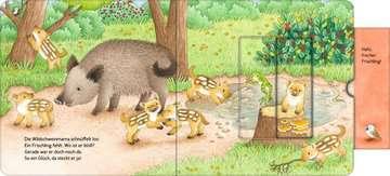 43846 Babybücher und Pappbilderbücher Wer hat sich hier versteckt? Suche die Waldtiere von Ravensburger 15