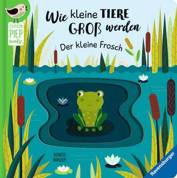 43860 Babybücher und Pappbilderbücher Wie kleine Tiere groß werden: Der kleine Frosch von Ravensburger 1