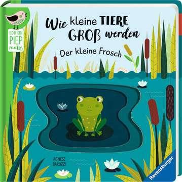 43860 Babybücher und Pappbilderbücher Wie kleine Tiere groß werden: Der kleine Frosch von Ravensburger 2