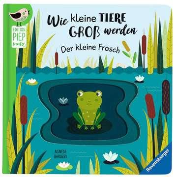 43860 Babybücher und Pappbilderbücher Wie kleine Tiere groß werden: Der kleine Frosch von Ravensburger 4
