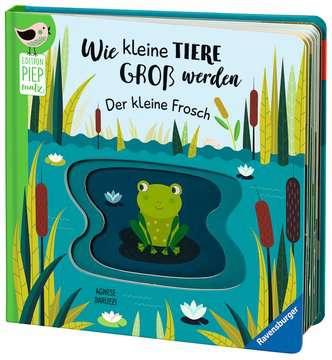 43860 Babybücher und Pappbilderbücher Wie kleine Tiere groß werden: Der kleine Frosch von Ravensburger 5