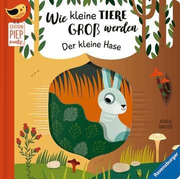 43861 Babybücher und Pappbilderbücher Wie kleine Tiere groß werden: Der kleine Hase von Ravensburger 1