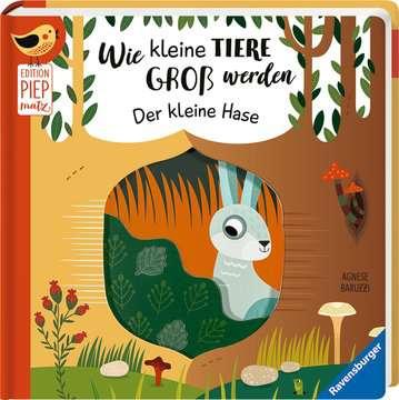 43861 Babybücher und Pappbilderbücher Wie kleine Tiere groß werden: Der kleine Hase von Ravensburger 2