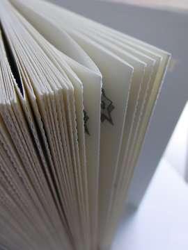 52609 Kinderliteratur Der Adventskalender - 1000 Gefahren im Schneeparadies von Ravensburger 6