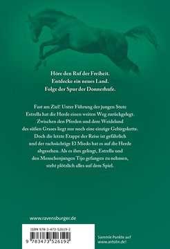 52619 Kinderliteratur Die Spur der Donnerhufe, Band 3: Nebelberge von Ravensburger 3