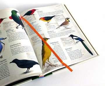 55087 Kindersachbücher Lexikon der Tiere von Ravensburger 5