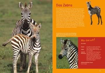 Wilde Tierkinder Kinderbücher;Kindersachbücher - Bild 3 - Ravensburger