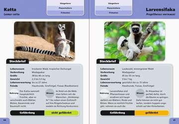 Taschenlexikon der Tiere Kinderbücher;Kindersachbücher - Bild 3 - Ravensburger