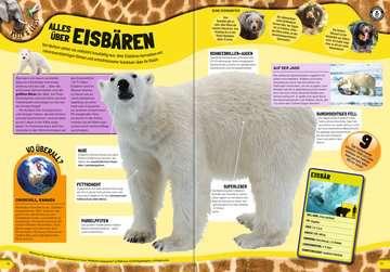 55462 Kindersachbücher Guinness World Records Wilde Tiere von Ravensburger 6