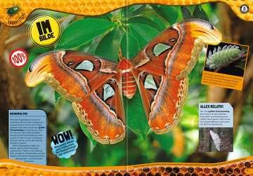 55462 Kindersachbücher Guinness World Records Wilde Tiere von Ravensburger 9