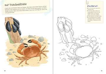 55772 Malbücher und Bastelbücher Mein großes Natur-Malbuch von Ravensburger 4