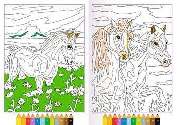 Malen nach Zahlen: Pferde Kinderbücher;Malbücher und Bastelbücher - Bild 4 - Ravensburger