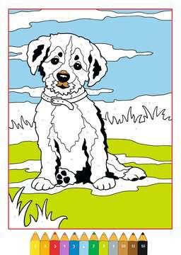 Malen nach Zahlen: Tierkinder Kinderbücher;Malbücher und Bastelbücher - Bild 3 - Ravensburger