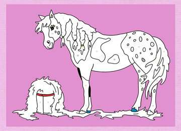 55865 Malbücher und Bastelbücher Malen nach Zahlen: Pferde und Ponys von Ravensburger 3
