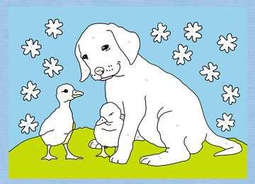 Malen nach Zahlen: Tierfreunde Kinderbücher;Malbücher und Bastelbücher - Bild 5 - Ravensburger