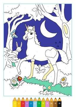 55869 Malbücher und Bastelbücher Malen nach Zahlen: Zauberwald von Ravensburger 4