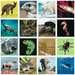 tiptoi® memory Rekorde im Tierreich tiptoi®;tiptoi® Spiele - Bild 5 - Ravensburger