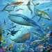 Dieren in de oceaan Puzzels;Puzzels voor kinderen - image 2 - Ravensburger