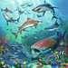 Dieren in de oceaan Puzzels;Puzzels voor kinderen - image 3 - Ravensburger