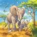 Wild Animals              3x49p Puslespil;Puslespil for børn - Billede 2 - Ravensburger