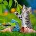 Süße Samtpfötchen Puzzle;Kinderpuzzle - Bild 4 - Ravensburger