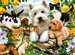 Happy Animal Buddies Jigsaw Puzzles;Children s Puzzles - image 2 - Ravensburger
