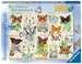 Butterfly Splendours, 1000pc Puzzles;Adult Puzzles - image 1 - Ravensburger
