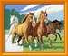 Wilde paarden Hobby;Schilderen op nummer - image 2 - Ravensburger
