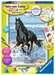 Pferd am Strand Malen und Basteln;Malen nach Zahlen - Bild 1 - Ravensburger