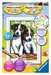 Schattige puppies Hobby;Schilderen op nummer - image 1 - Ravensburger